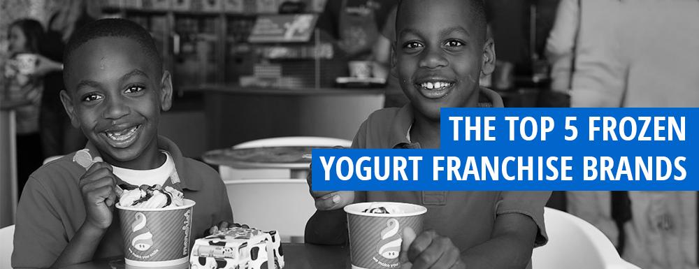 Top 5 Frozen Yogurt Franchise Brands