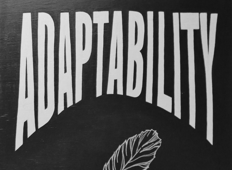 company value: adaptability