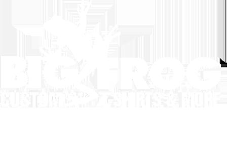 Big Frog Logo