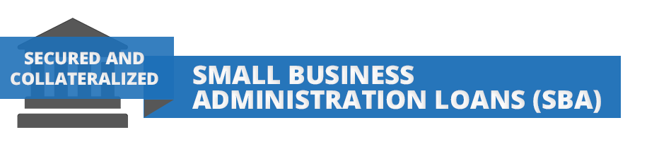 section header for small business administration loans commonly known as SBA loans