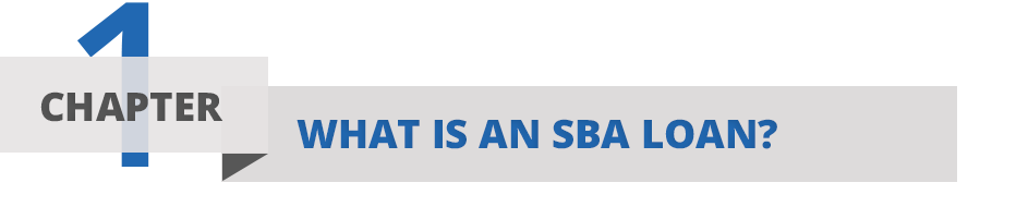 Chapter One: What is an SBA Loan