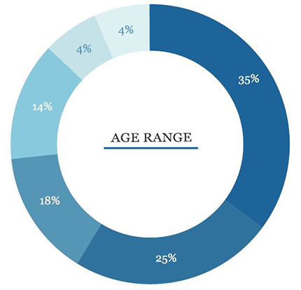 A pie chart showing the distribution of ages in surveyed small business owners
