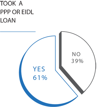 pie chart graphic showing how many small business owners received a PPP or EIDL loan